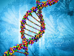 People search sites DNA databases used by law enforcement